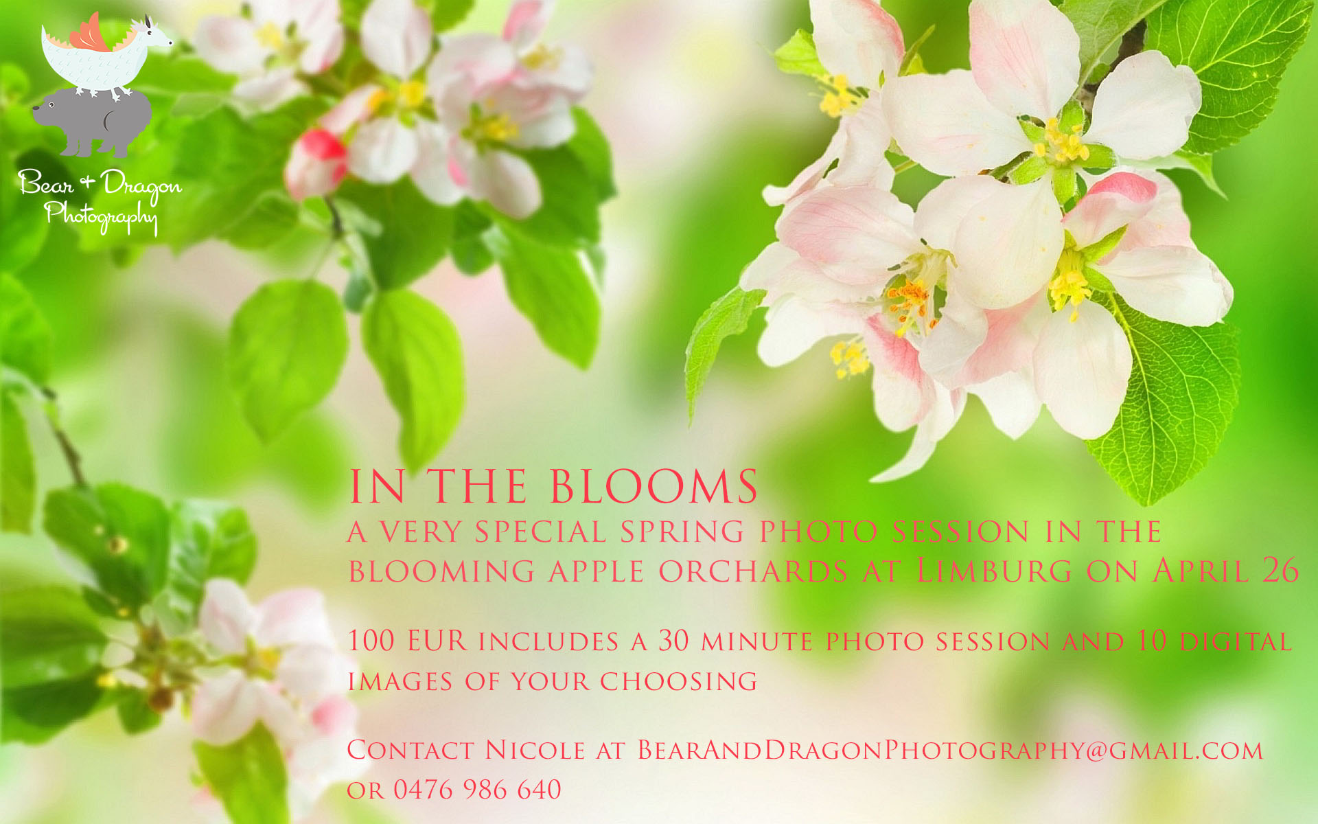 Announcing Our First 2015 Mini Session In The Blooms In The