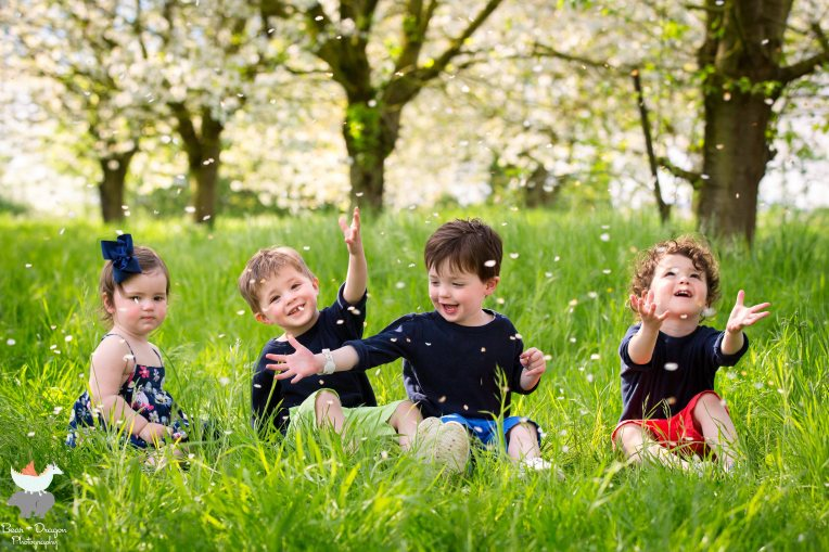 apple-blossoms-blog-10
