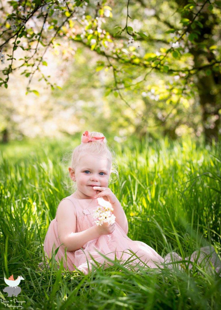apple-blossoms-blog