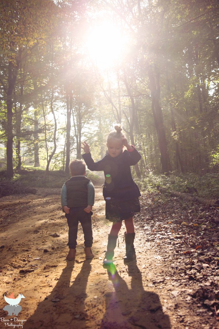 forest-blog-13