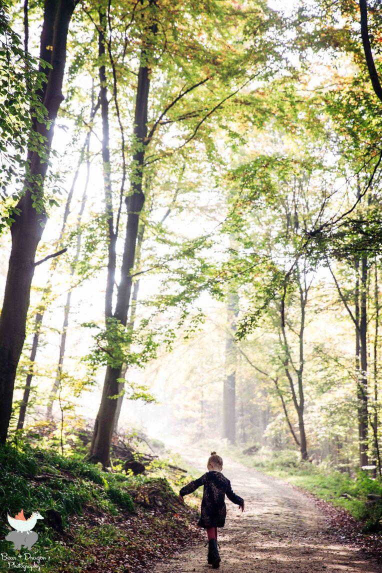 forest-blog-4