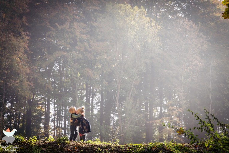 forest-blog-5