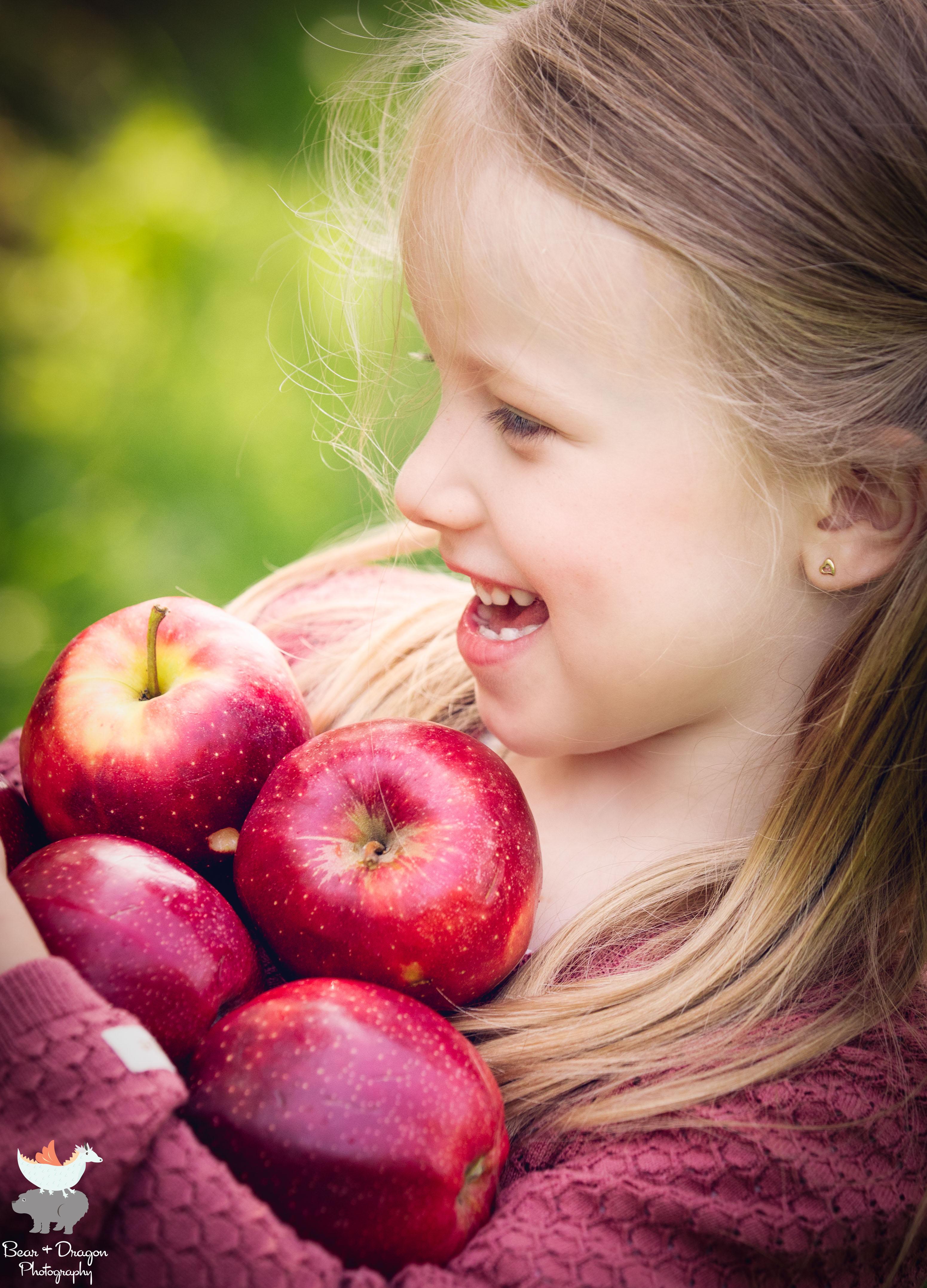 Apple Harvest Blog-9