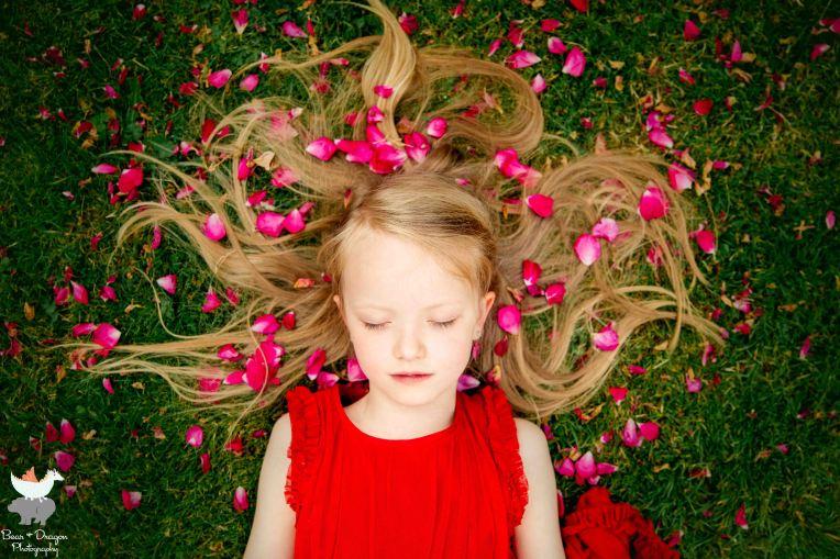 Adventures in the rose garden blog-8